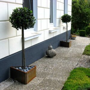 Twei dreieckige Hochbeete mit Bäumen aus Land Hochbeet