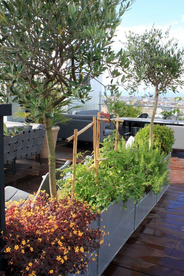 Balkonkasten als Raumteiler an der Terrasse