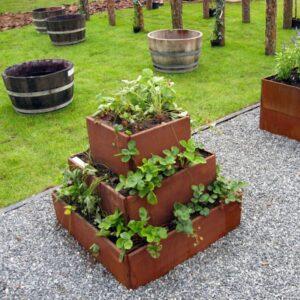 Pyramide für Pflanzen wie Erdbeere