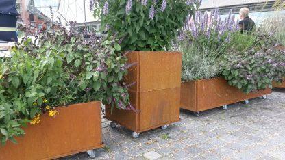 Mobile Hochbeete aus Land Hochbeet