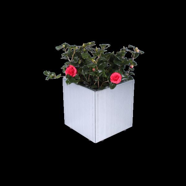 Blumenkasten aus hochverzinktem Magnelis-Stahll aus Land Hochbeet