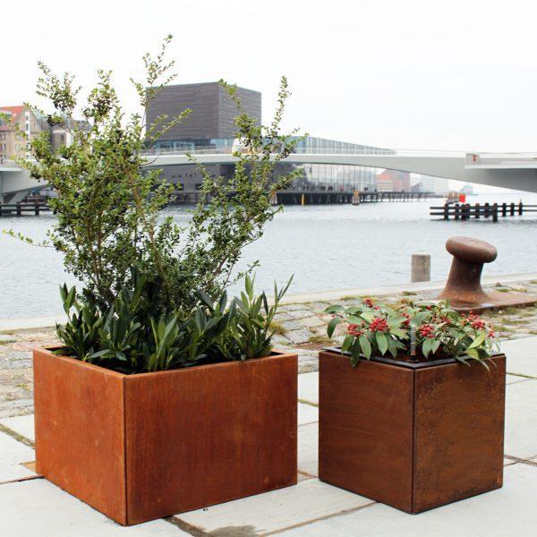 Pflanzkübel 40 x 40 und 60 x 60 cm aus Land Hochbeet am Hafen